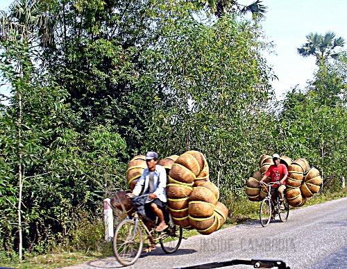 apad 073 yellow-rimmed baskets