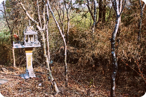 apad 089 spirit house