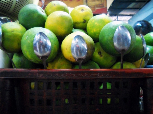 apad 103 battambang oranges
