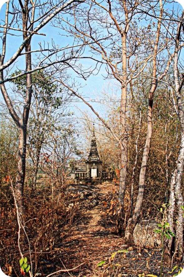 apad 112 woods phnom prasith